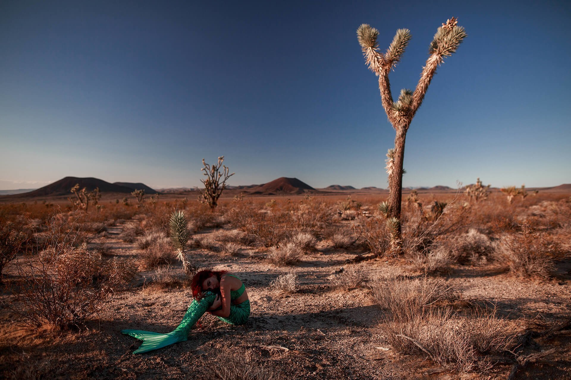 Mermaid Photoshoot LA Mojave Desert California 8